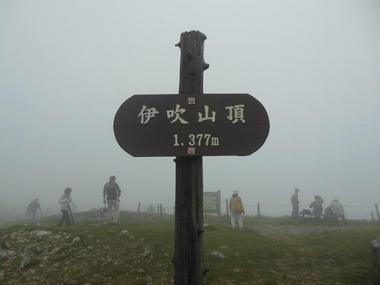 DSCN4799.jpg