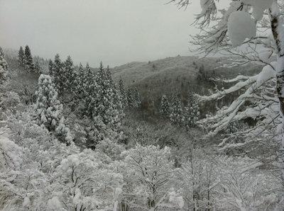 2013冬PW2